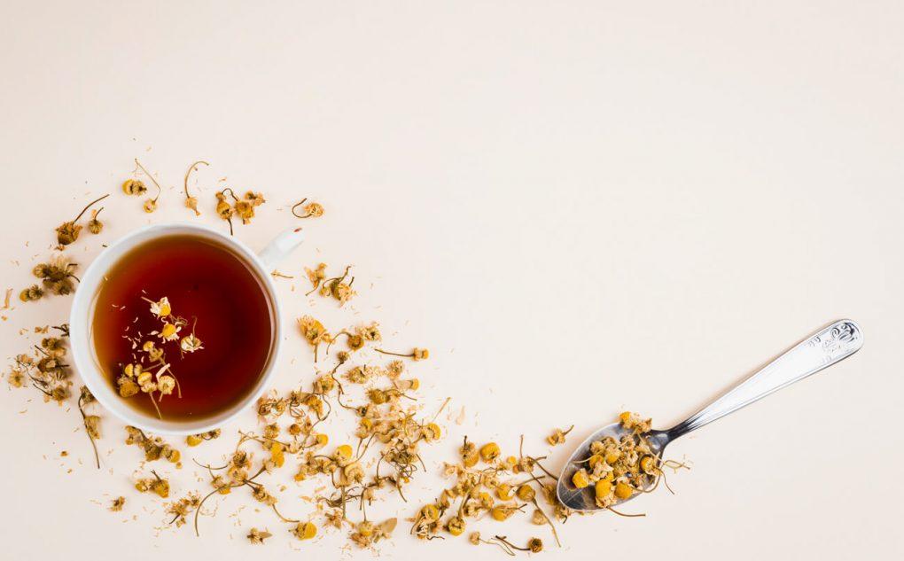 paises cultivam chá